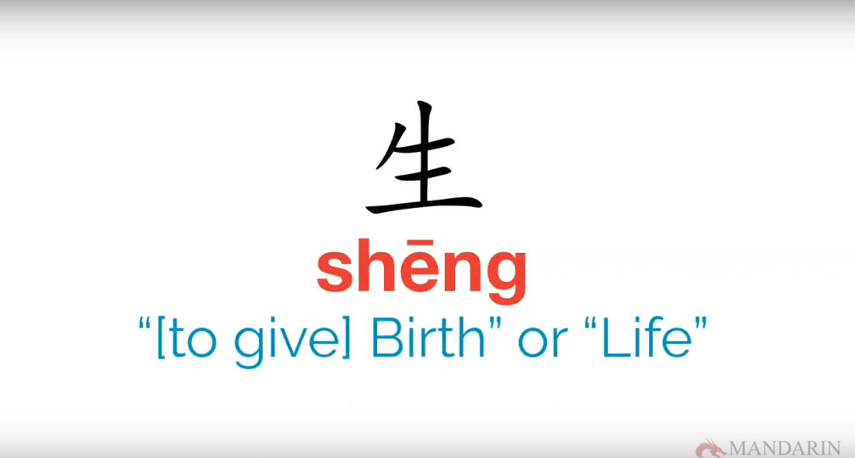 sheng in chinese